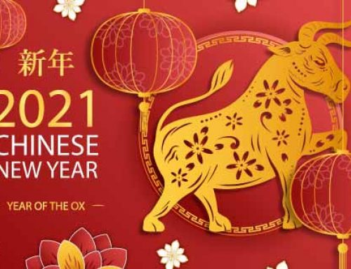 Chinese New Year Holiday Notice 2021